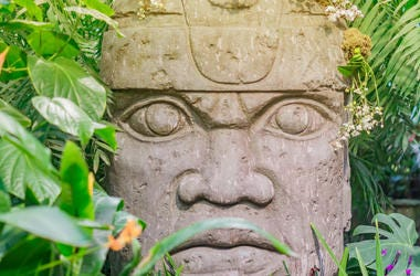 Olmec stone face