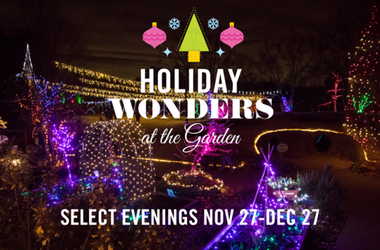 Holiday Wonders 2020