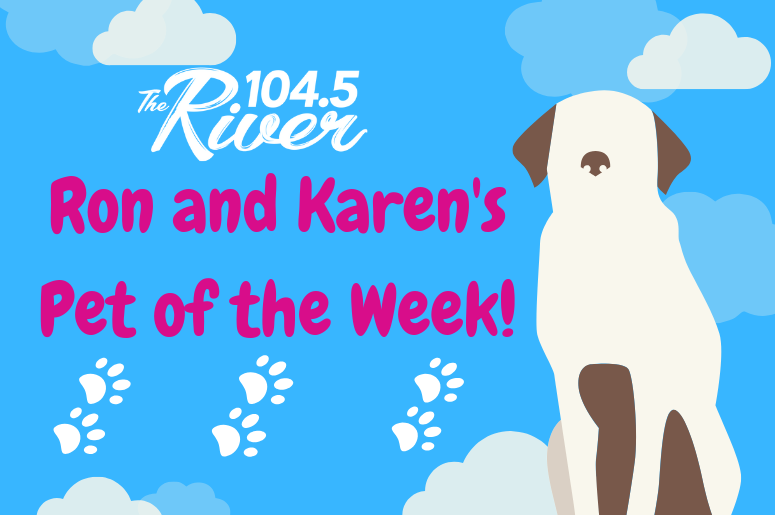 Ron and Karen's Pet of the Week