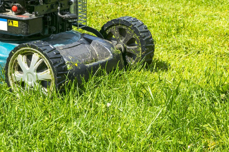 Lawn mower on green grass.