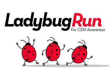 Ladybug Run for CDH Awareness