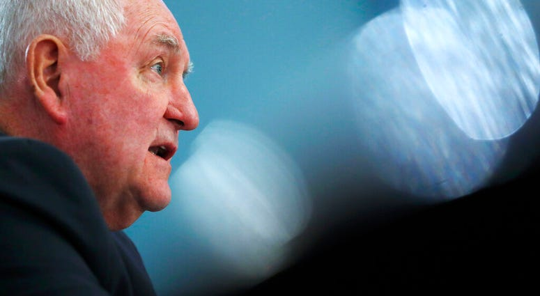 FILE - In this Feb. 27, 2019 file photo, Agriculture Secretary Sonny Perdue testifies during a House Agriculture Committee hearing, on Capitol Hill in Washington. (AP Photo/Jacquelyn Martin)