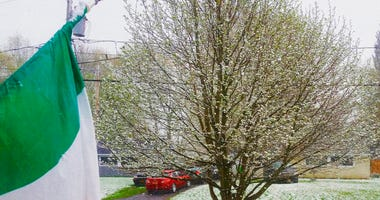 In this photo provided by Timothy Ferris, snow accumulates on the grass and trees in Syracuse, N.Y., Saturday, May 9, 2020. Mother's Day weekend got off to an unseasonably snowy start in areas of the Northeast thanks to the polar vortex.