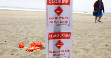"A closure sign reading ""Closure, Shark Attack, Do Not Enter"" is posted at Manresa State Beach near Watsonville, south of San Jose, Calif., Sunday, May 10, 2020."