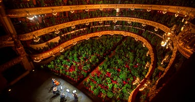 Musicians rehearse at the Gran Teatre del Liceu in Barcelona, Spain, Monday, June 22, 2020.  (AP Photo/Emilio Morenatti)