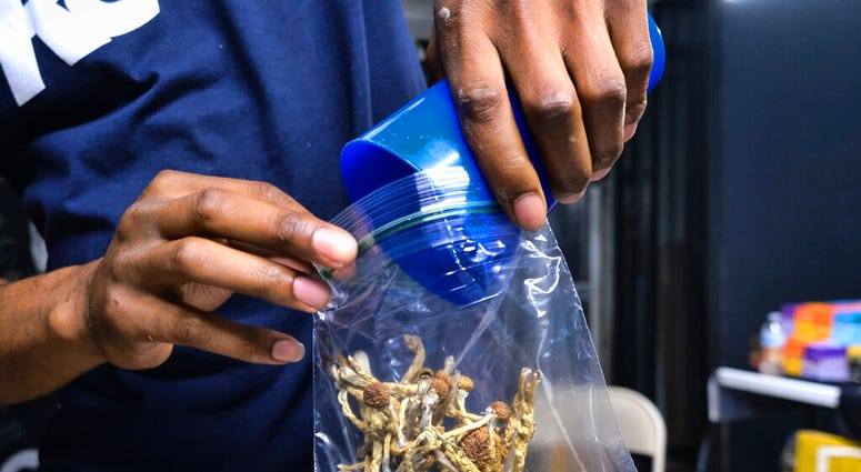 FILE - In this May 24, 2019, file photo a vendor bags psilocybin mushrooms at a pop-up cannabis market in Los Angeles.