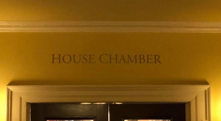 The State House Chamber.  (Matt Demlein, WRVA)