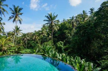 Beautiful pool with junge views in Ubud, Bali