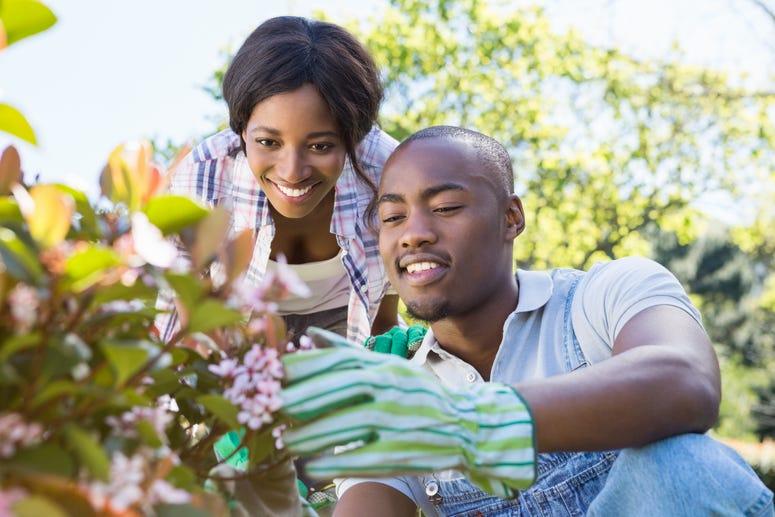 gardening date