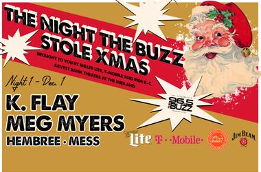 The Night The Buzz Stole Xmas Night #1