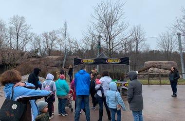 Zoo with Debbins