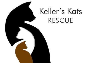Keller's Kats Rescue