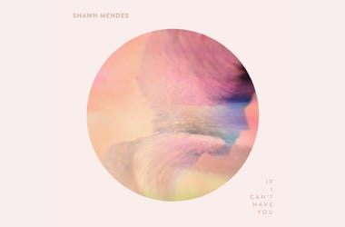 "Shawn Mendes ""If I Cant Have You"""