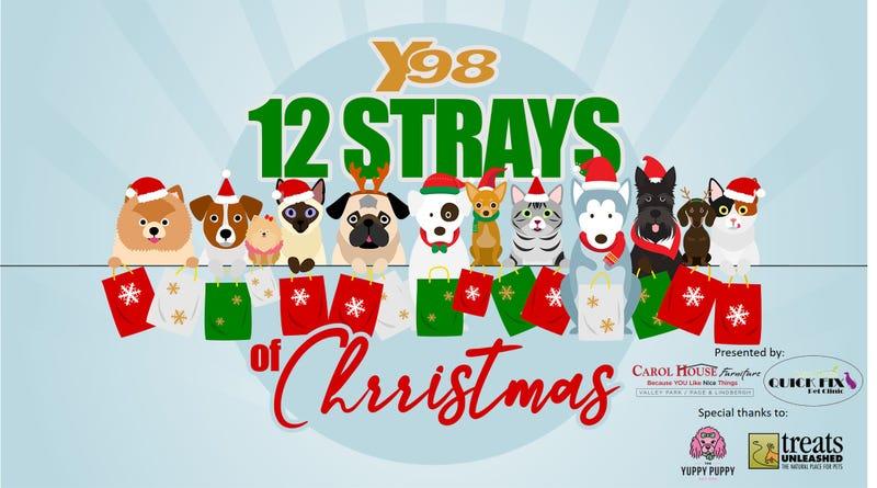 12 Strays of Christmas