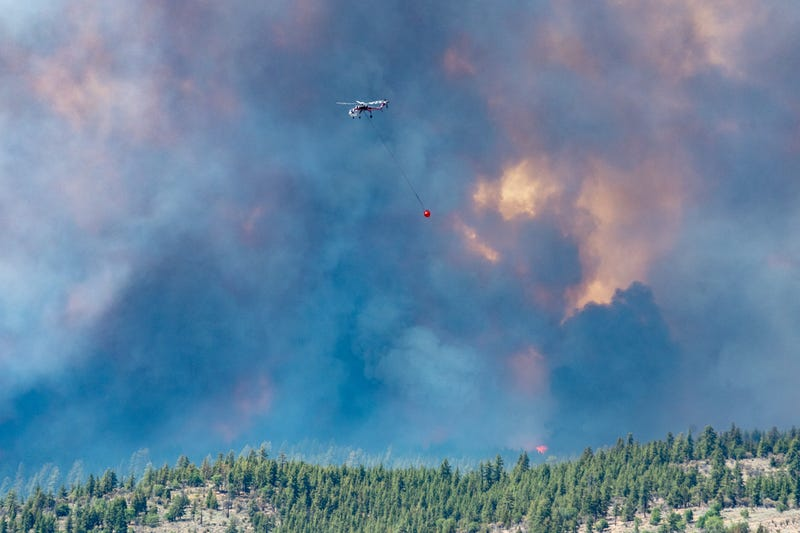 California Highway Patrolman and CalTrans employees provide road closure and safe entry and access for the firefighters and other resources in the area of the Beckwourth Complex Fire near Frenchman Lake in northern California, July 8, 2021.