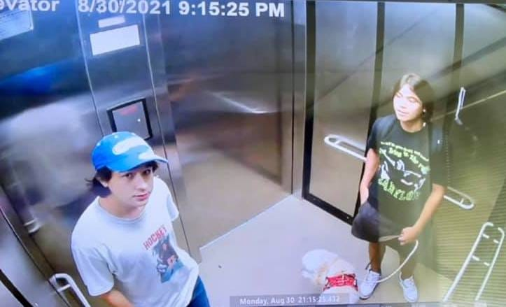 Two suspects accused of graffiti incidents in Rochester