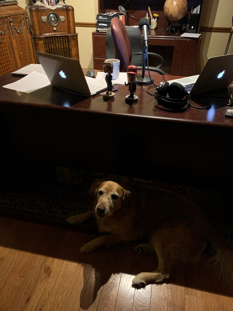 Ellie supervising