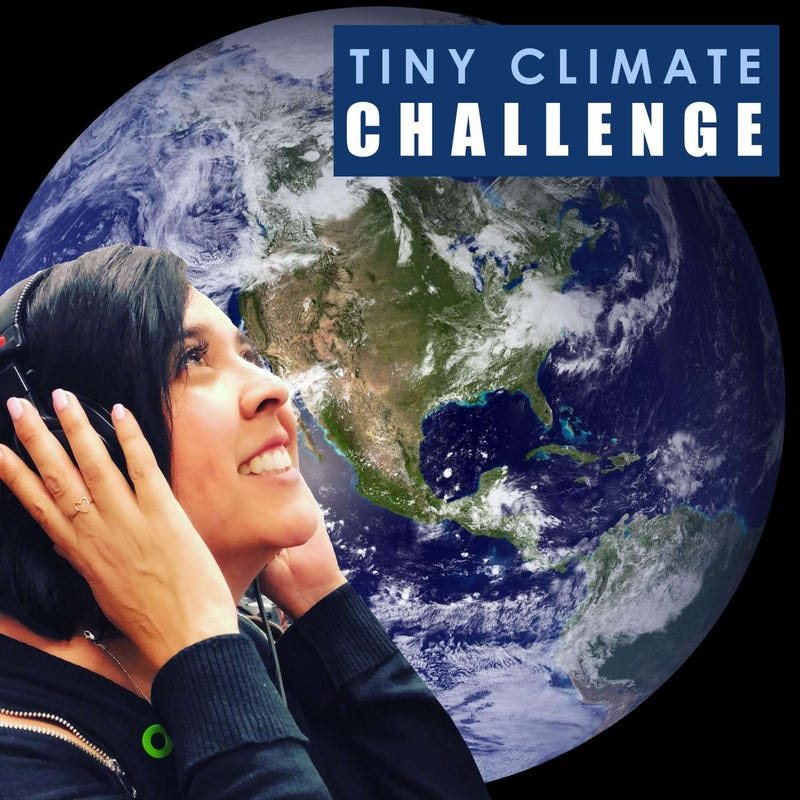 Tiny Climate Challenge