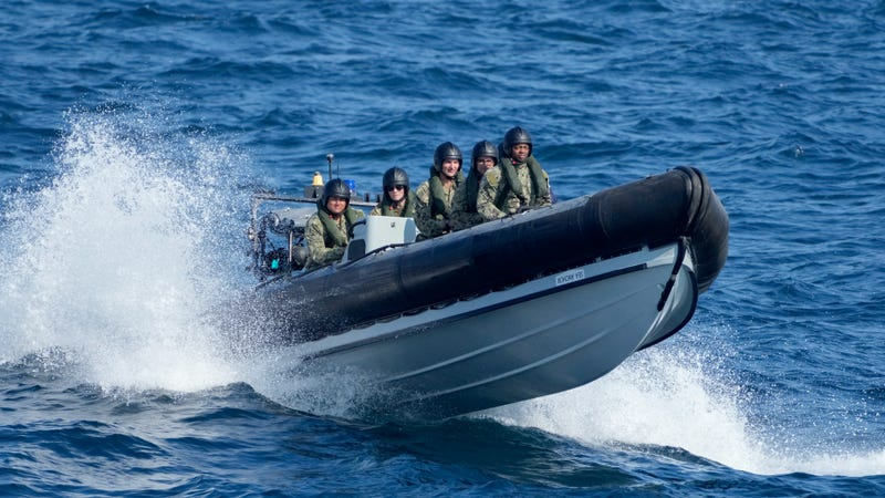 Black Sea drills showcase strong NATO-Ukraine defense ties