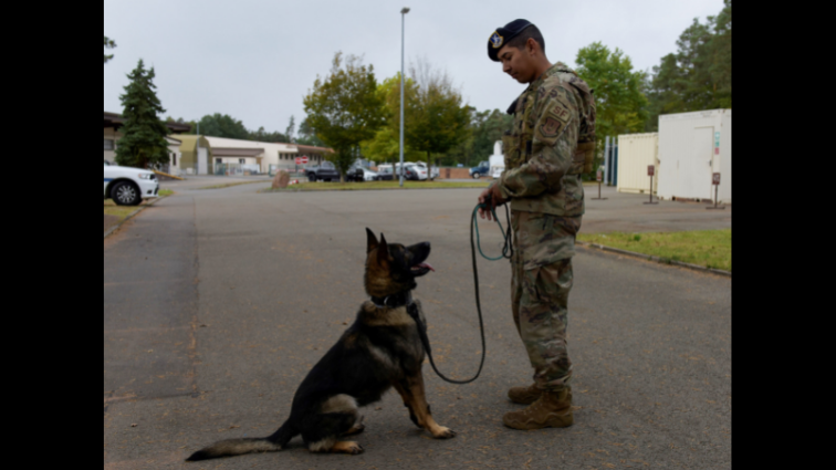 Upgraded kennel brings Military Working Dogs home