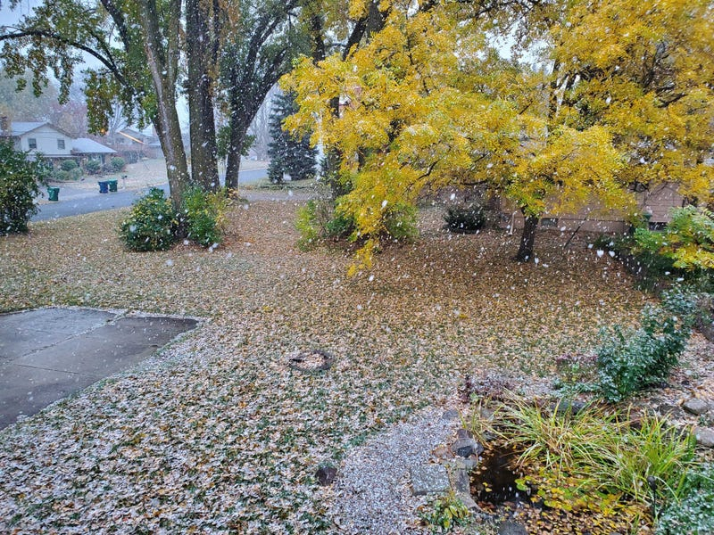 First Snow in MN in 2020