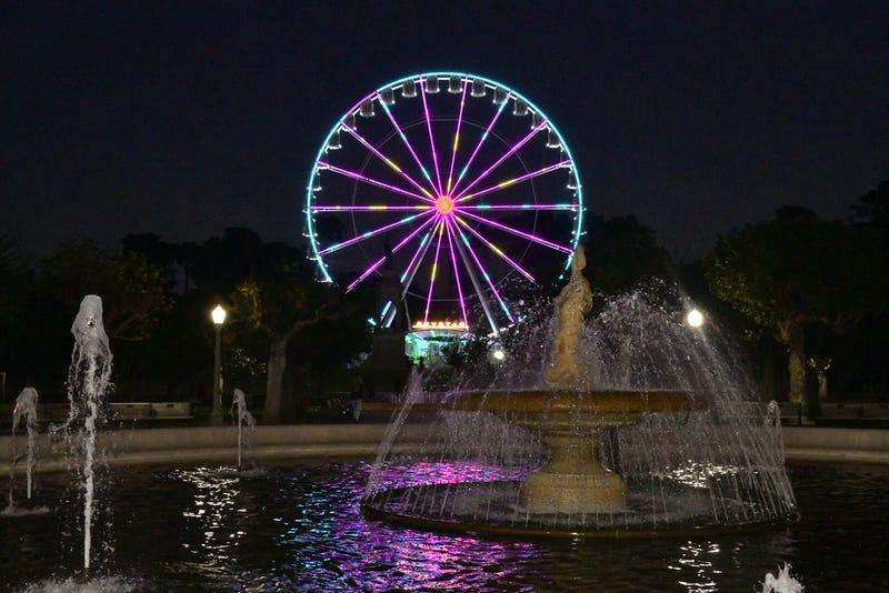 The SkyStar Observation Wheel lights up the night at Golden Gate Park.