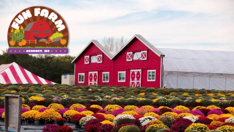 Fun Farm Pumpkin Patch