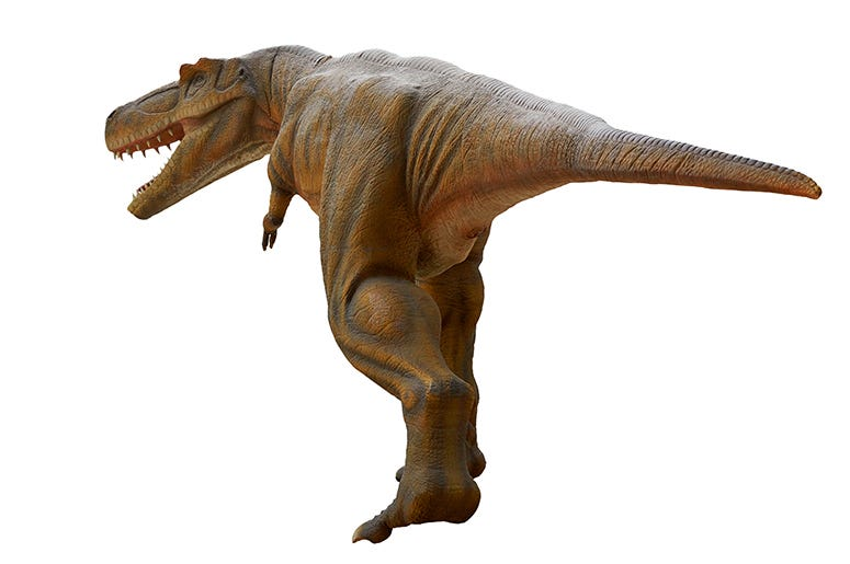 Dinosaur butt