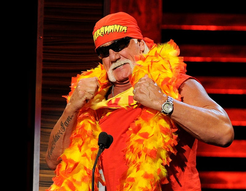 Wrestler Hulk Hogan speaks onstage at the Comedy Central Roast Of David Hasselhoff held at Sony Pictures Studios on August 1, 2010 in Culver City, California.