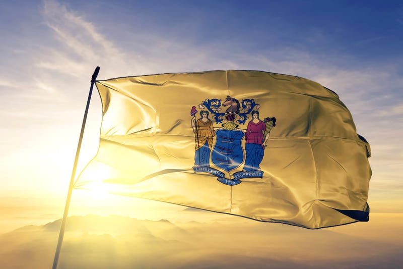 The New Jersey state flag.