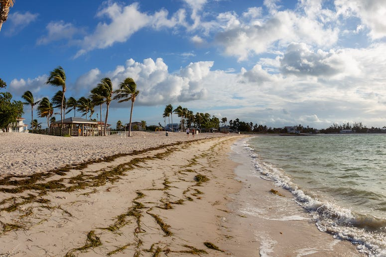 Beach, Ocean, Florida