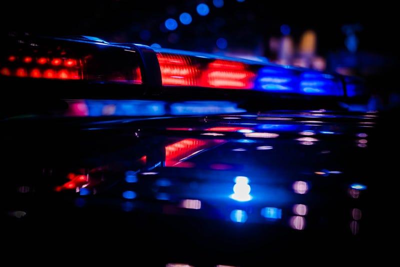 Teen girl fatally shot in West Elsdon