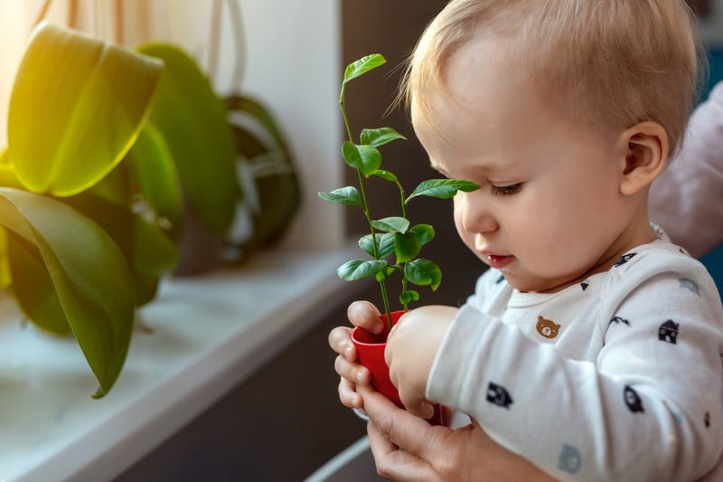 Baby learning about plants
