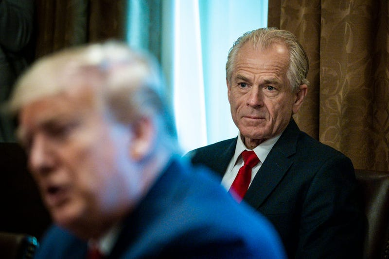 Director of the National Trade Council Peter Navarro looks on as President Donald Trump meets with supply chain distributors in reference to the COVID-19 coronavirus pandemic, in the Cabinet Room in the West Wing at the White House on Sunday, March 29, 2020. (Photo by Pete Marovich-Pool/Getty Images)