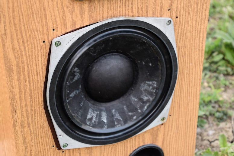 Speaker, Backyard
