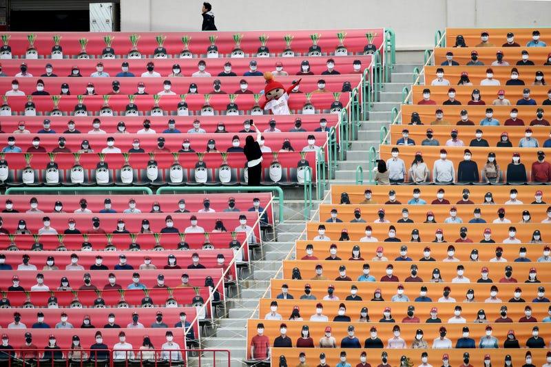 KBO Fans