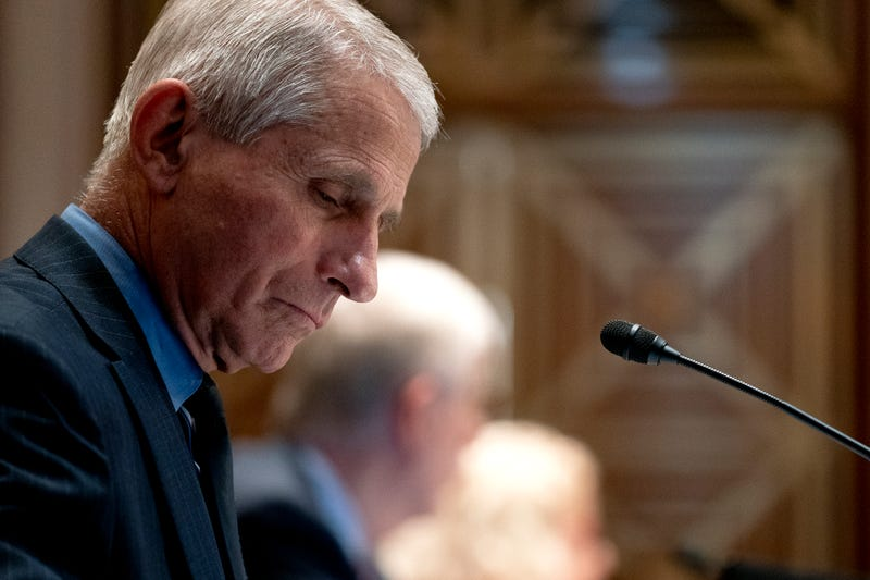 Dr. Anthony Fauci at a Senate subcommittee hearing.