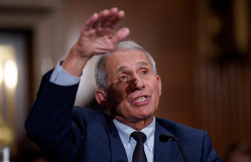 Dr. Anthony Fauci testifies before the Senate.