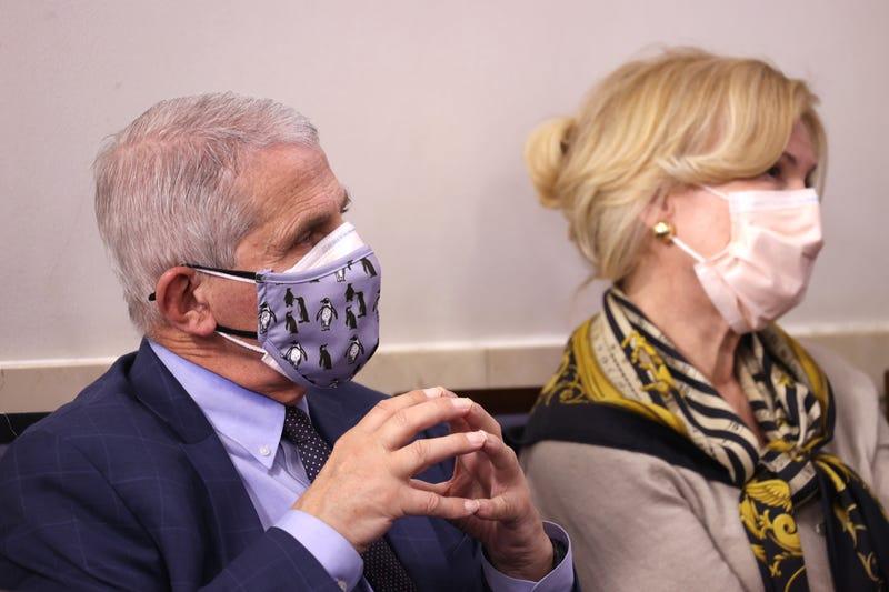 Dr. Anthony Fauci and Dr. Deborah Birx