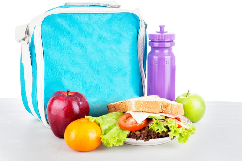 school lunchbox lunchbag with food sandwich fruits and water bottle