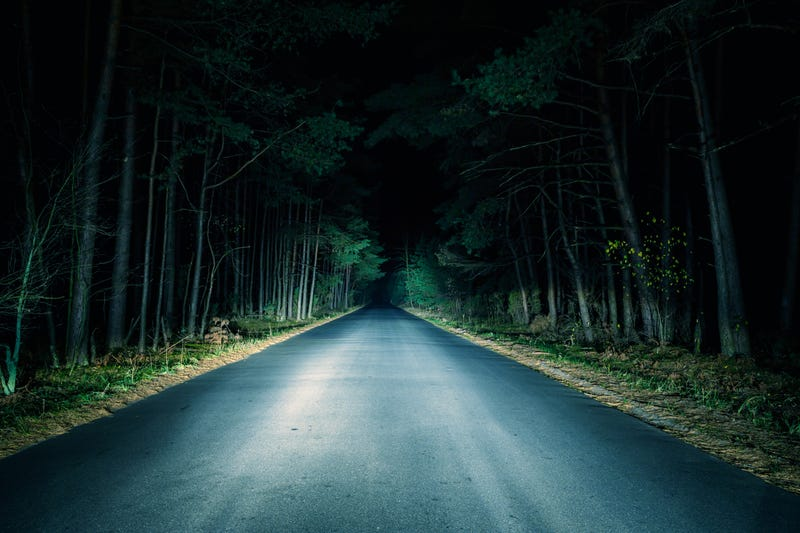 Driving through woods at night