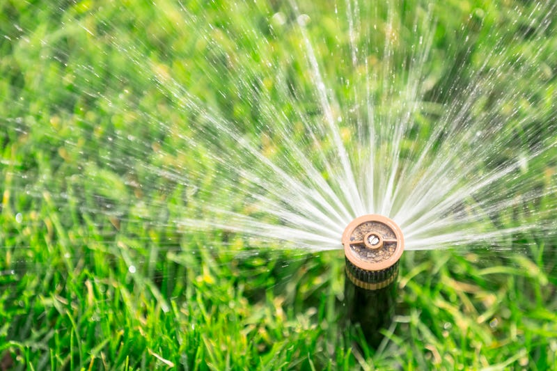 Californians are being asked to conserve water due to drought conditions. A recent study suggested that anonymous water waste reporting can contribute to conservation. (Getty Images)