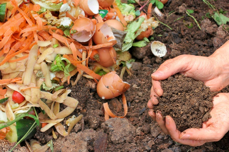 Someone picks up a handful of dirt beside scattered food scraps