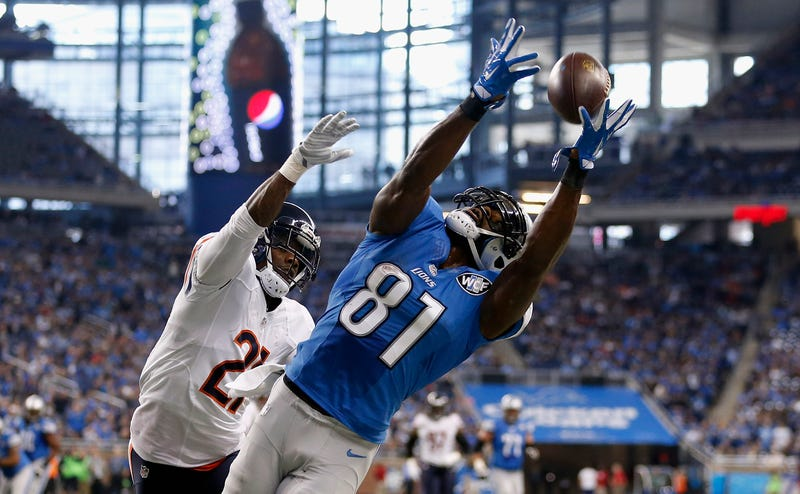Calvin Johnson extends for a lunging catch against the division-rival Bears