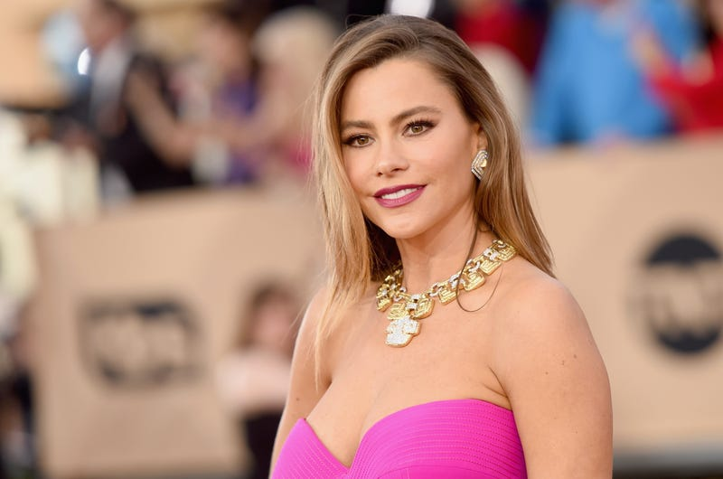 Actress Sofia Vergara attends The 22nd Annual Screen Actors Guild Awards at The Shrine Auditorium