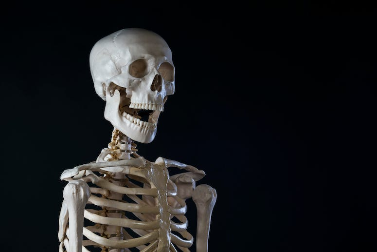 Skeleton, Black Background