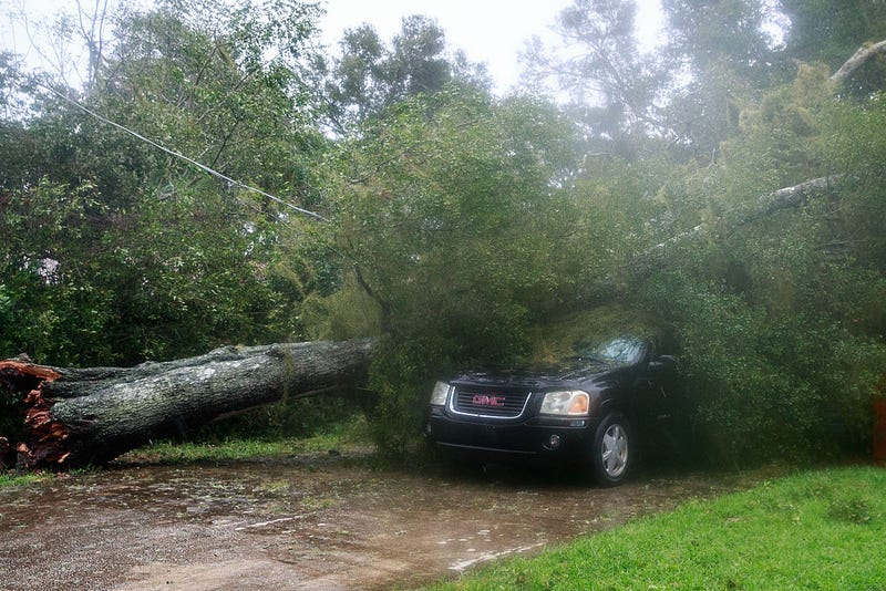 ORMOND BEACH, FL - OCTOBER 7: A downed tree from high winds rests against a car in a residential community after Hurricane Matthew passes through on October 7, 2016.