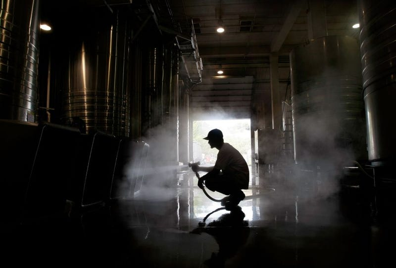 A worker uses a hose to clean out plastic bins in the fermenting tank room on October 9, 2007 in Napa, California.