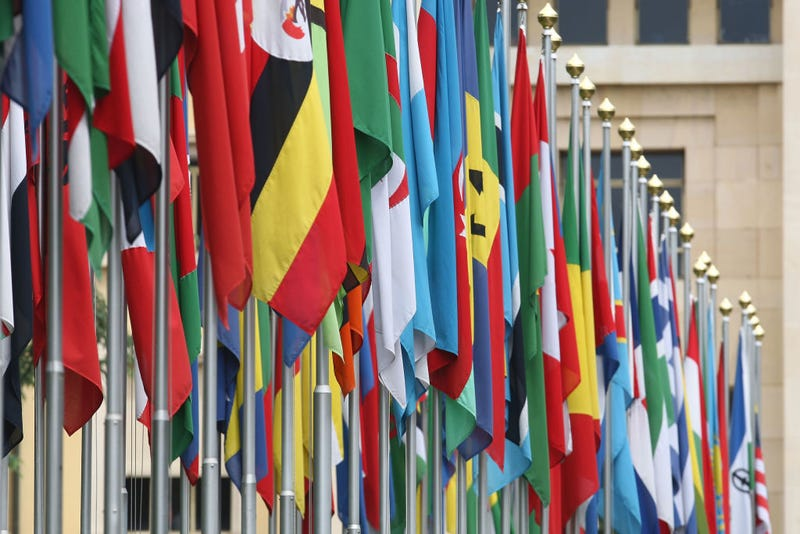 Numerous national flags are seen in front of the United Nations Office in Geneva, Switzerland