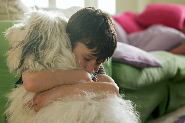 Boy, Dog, Hug, Hugging Dog